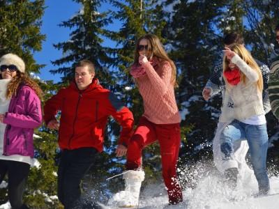Winter lapland tours