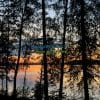 Midnight sun safari in Lapland