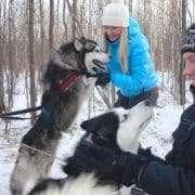Husky safari in Rovaniemi