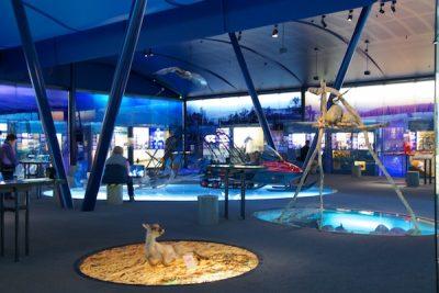 Siida Sami Museum in Inari