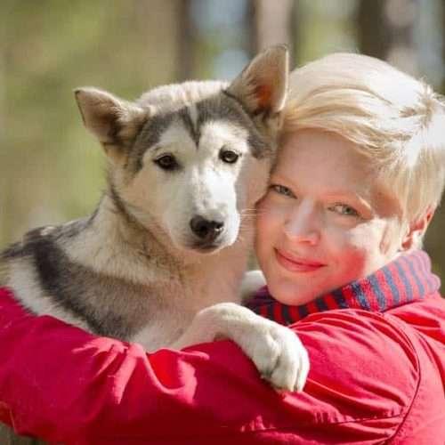 Husky tours in Lapland