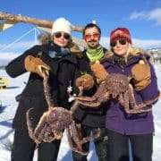 Crab safari in Kirkenes