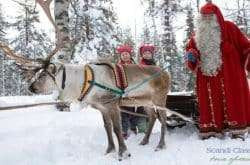 Reindeer sleigh ride at Santa's Village